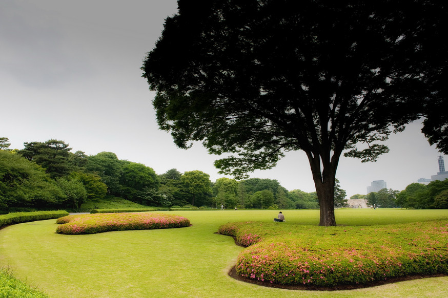Tokyo jardin Palais impérial