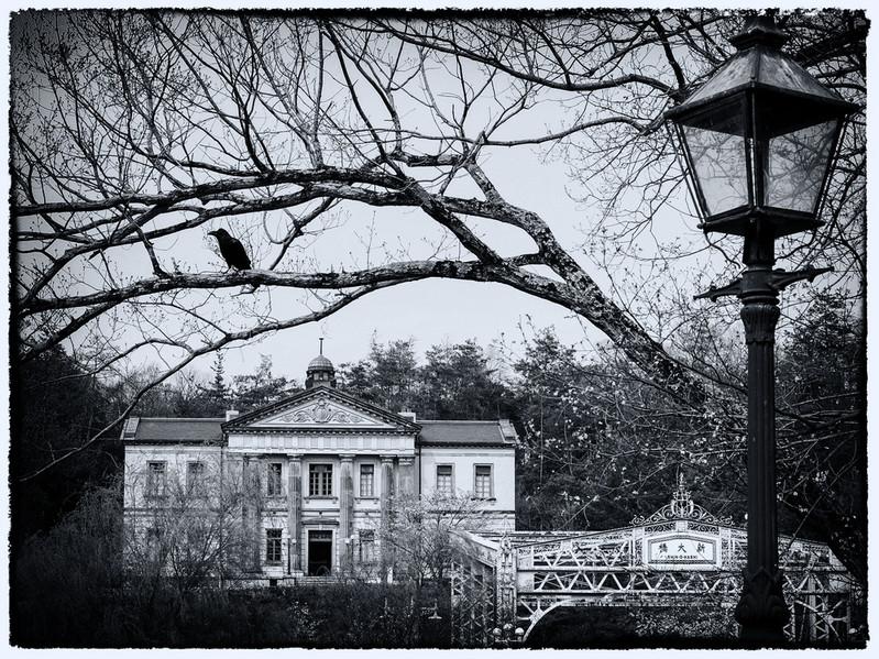 Parc musée Meiji-Mura corbeau à l'affut