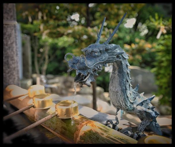 Dragon et purification