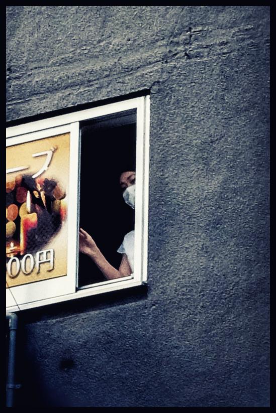 2014 à la fenêtre.jpg