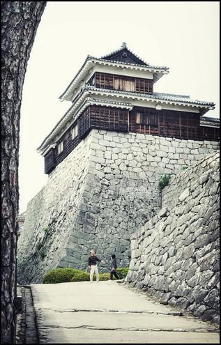 Matsuyama arbre et chateau