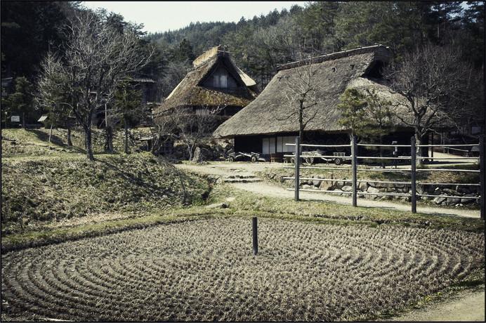 Maisons de Shirakawa - type de culture