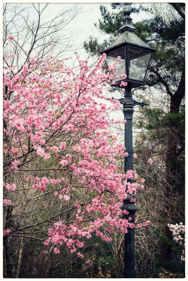 Parc musée Meiji-Mura