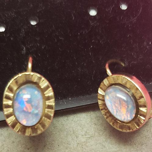 14kg Opal Clawback Earrings