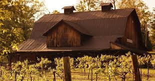 Winery%20and%20vineyard_edited.jpg