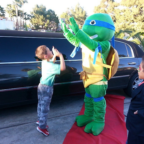 ABC's Mascot Themed Ninja Turtle Appearances