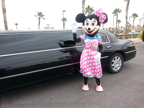 ABC'S Minnie Mouse Theme Character