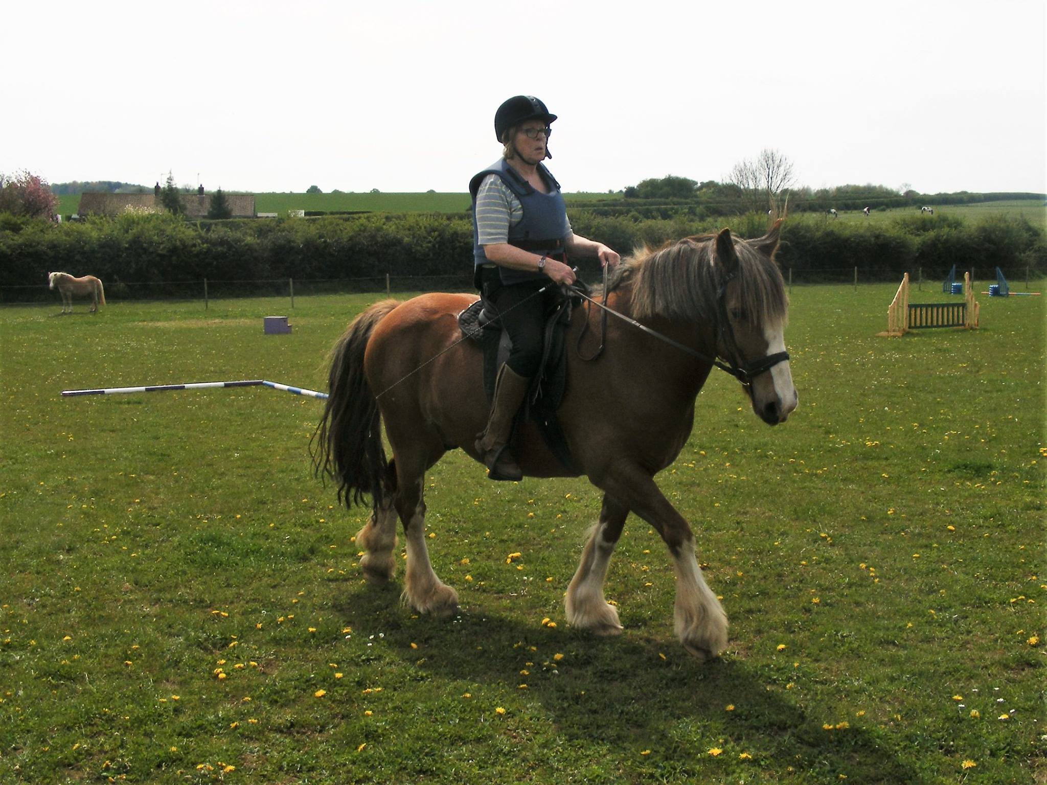 Joyce and her gelding Boxer