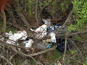 IMG_1885 Before with Nasty Trash.jpg