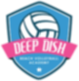 DD Academy logo.png