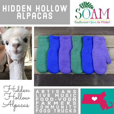 Hidden Hollow Alpacas