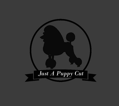 final logo JAPC_edited_edited.jpg