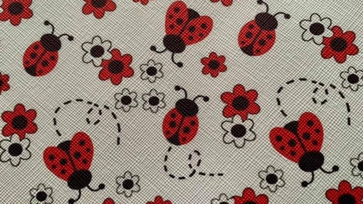 Ladybird faux leather sheet approx 22x30cm
