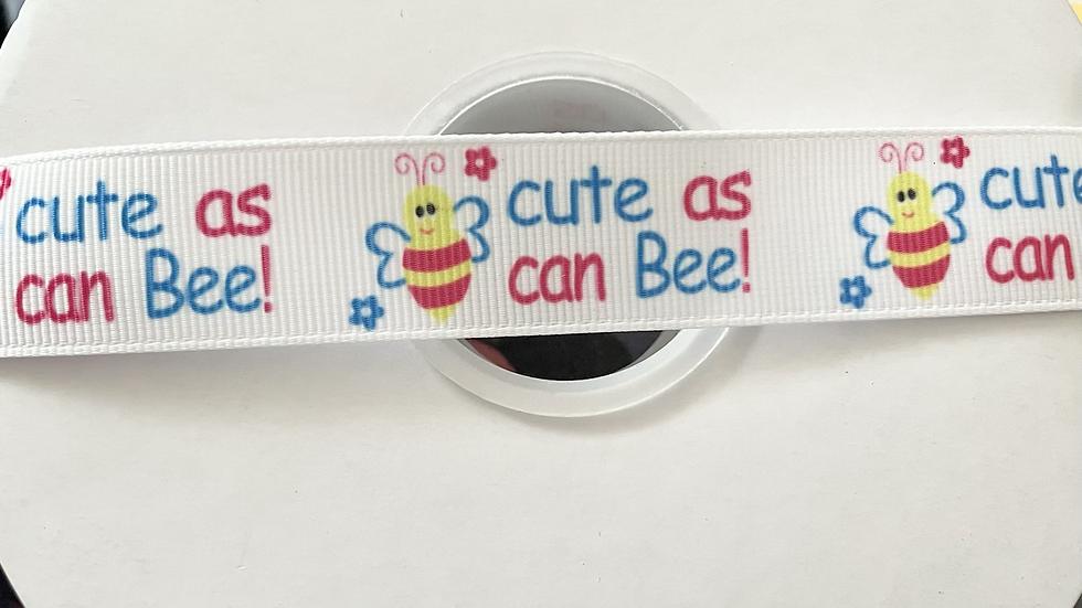 Cute as can bee! 22mm grosgrain ribbon per meter