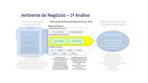 Maturidade nos processos organizacionais