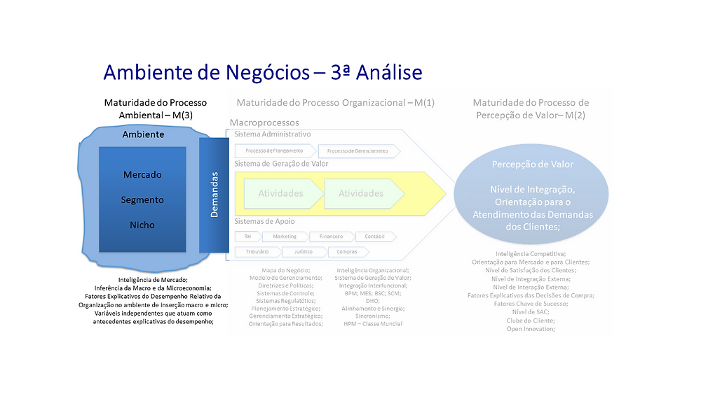 maturidade organizacional nível 3, redaelli