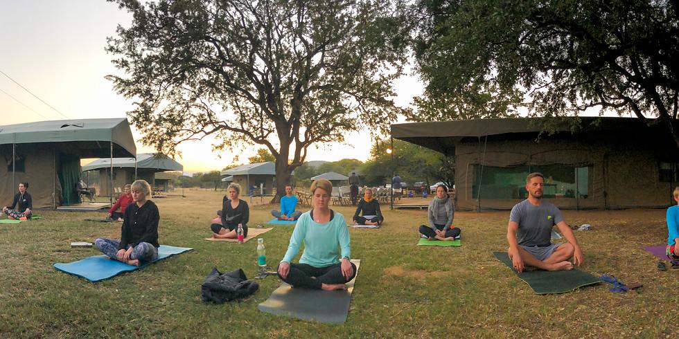 Yoga and Safari Retreat