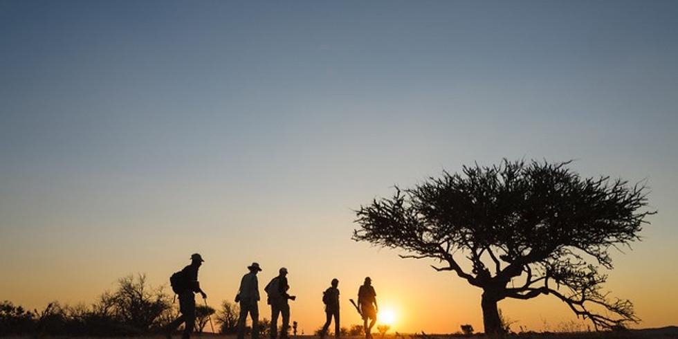 Wild Yoga and Safari Retreat