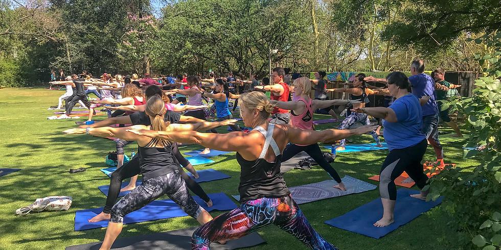Yoga and Picnic // Leafy Greens