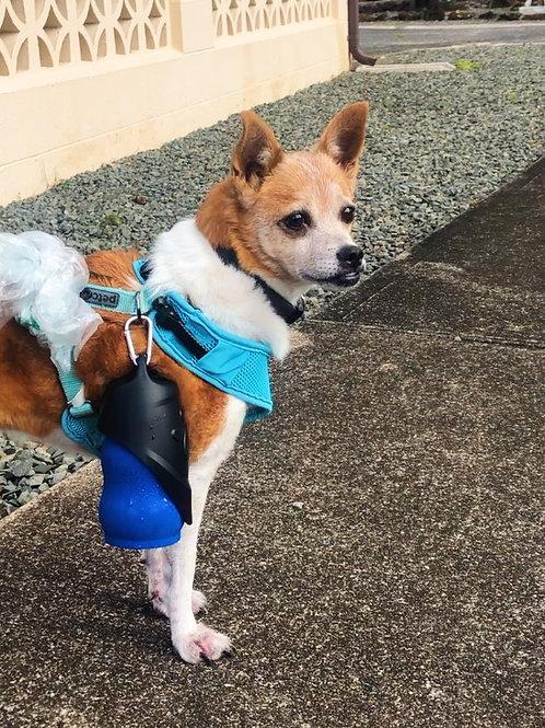 Dog Water Bottle & Travel Bowl