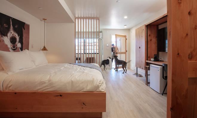 Standard Room: View toward entry door