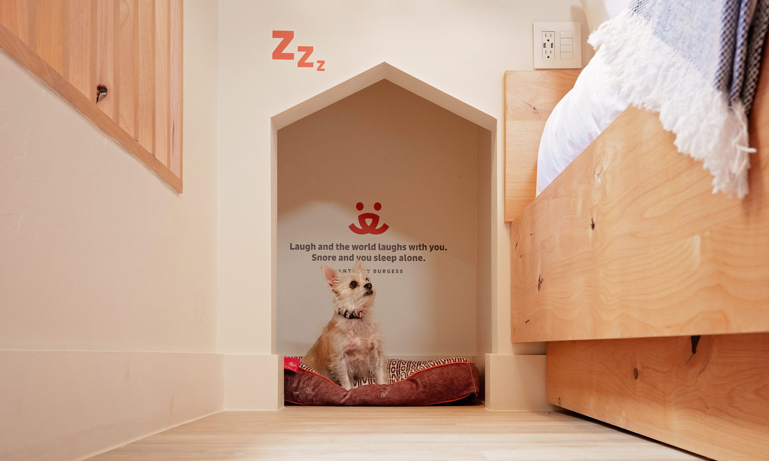 King Suite: In wall pet cubbie