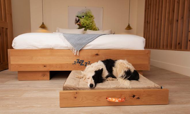 Standard Room: King bed