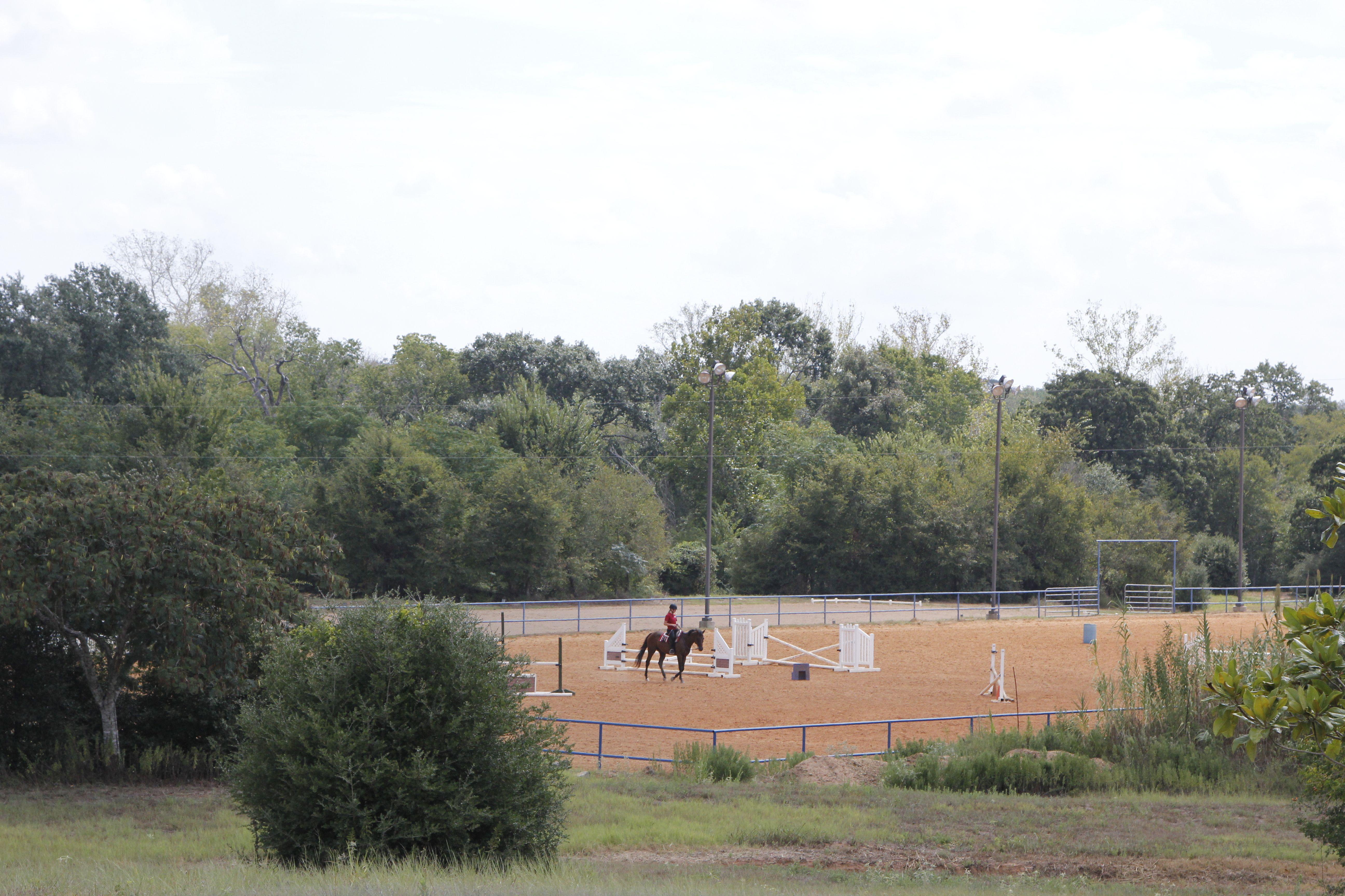 HORSE HAVEN PVC JUMPS
