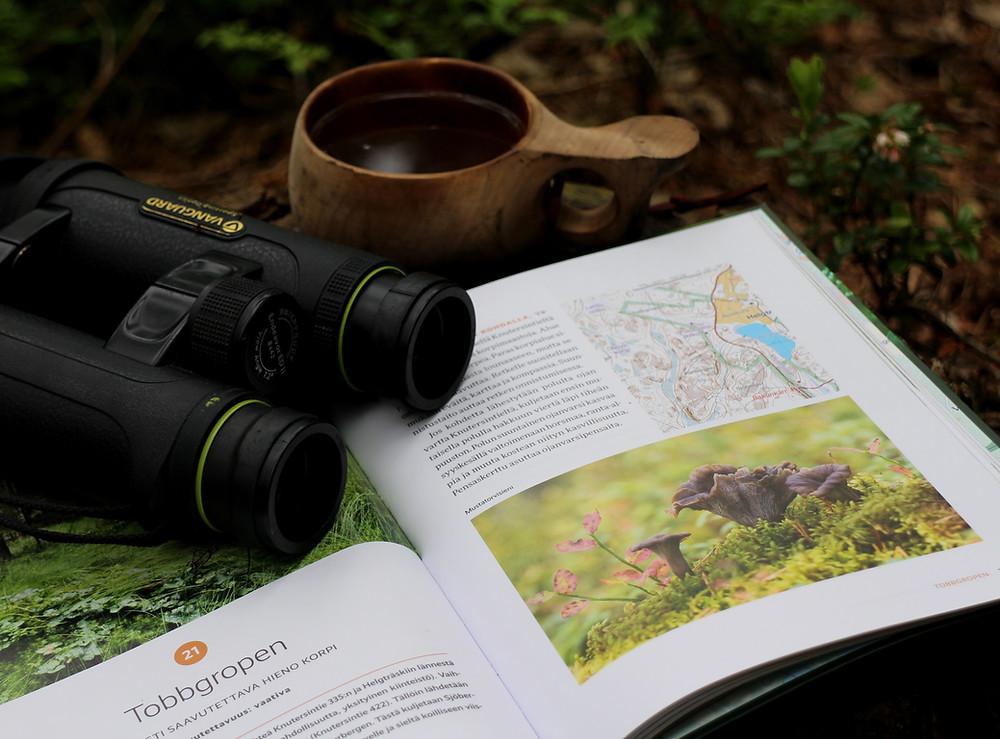 Kuva: Terhi Yliselä, Sipoonkorpi, Luontokohdeopas