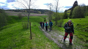 Tykyryhmä lähdössä Sipoonkorven kansallispuistoon