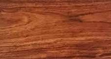 Caribbean Walnut(T'zalam).jpg