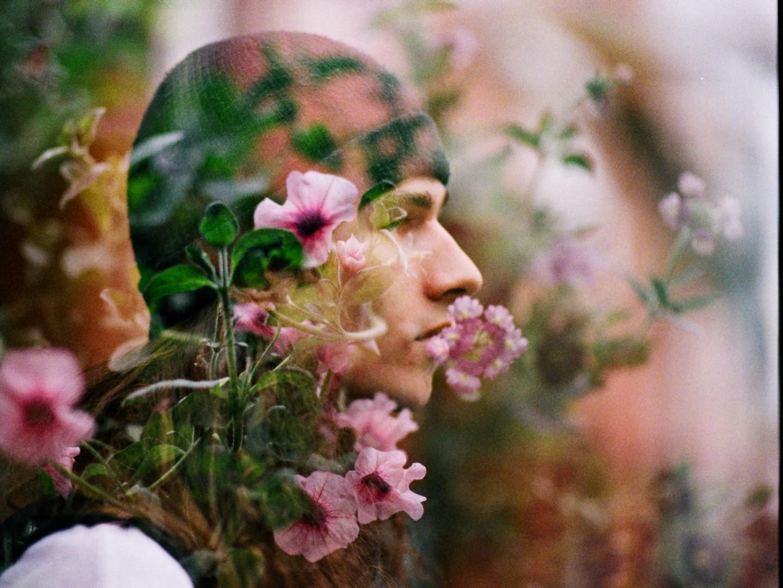 bloom-forever_36421682945_o.jpg