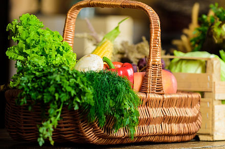 Green leafy vegetables like kale with corainder, red capsicum, radish, whole sweet corn and juicy apples aesthetically placed in a wicker basket