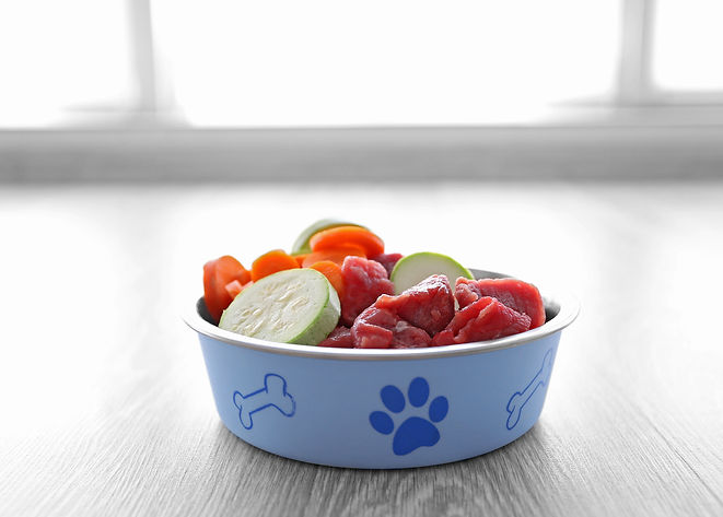 Pastel blue food bowl with alternating pictures of a dog bone and paw filled with organic raw meat, fresh bottle gourd and carrots