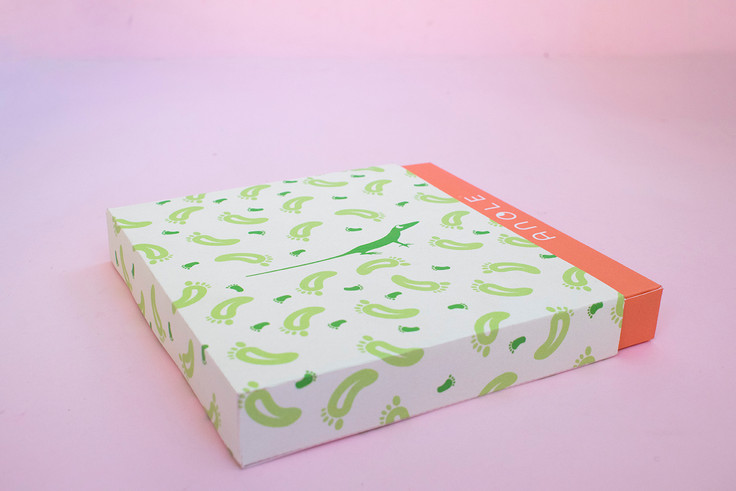 Studio-zak-packaging-design-anoleDSC_034
