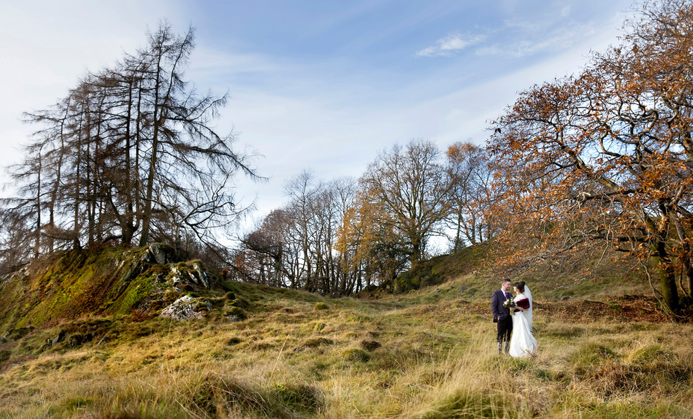 Lake District Wedding Photographer - Wild Boar