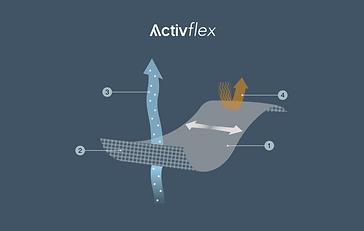 ActiveFlex .png