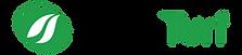 ScanTurf Logo flat wix.png