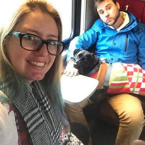 Como Andar de Trem na Suíça