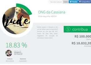 SORTEIO PULSEIRA PANDORA - Rifa da ONG da Cassiana