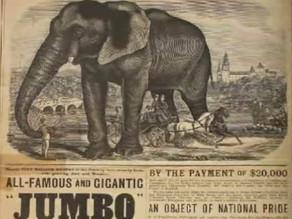 A trágica história de Jumbo, o elefante mais famoso do mundo, que inspirou Disney e apelidou avião.