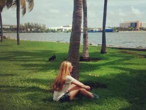 Bayside Mall - Compras em Miami