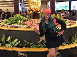 O MGM Grand - Meu Hotel em Las Vegas