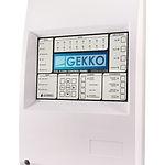 GFE - GEKKO.jpg
