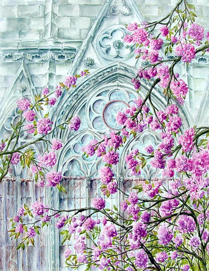 Notre Dame Blossom