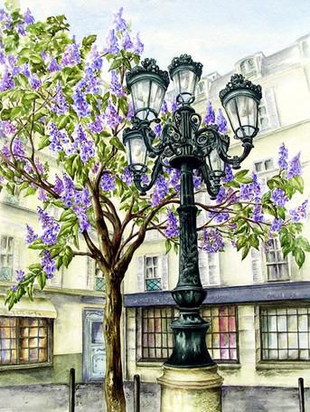 Place de Furstenburg Blossom