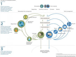 How the dwiss' sustainable design supports the Circular Economy