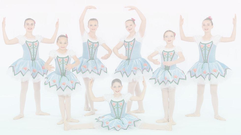 Groups Recreational Ballet 1_edited.jpg