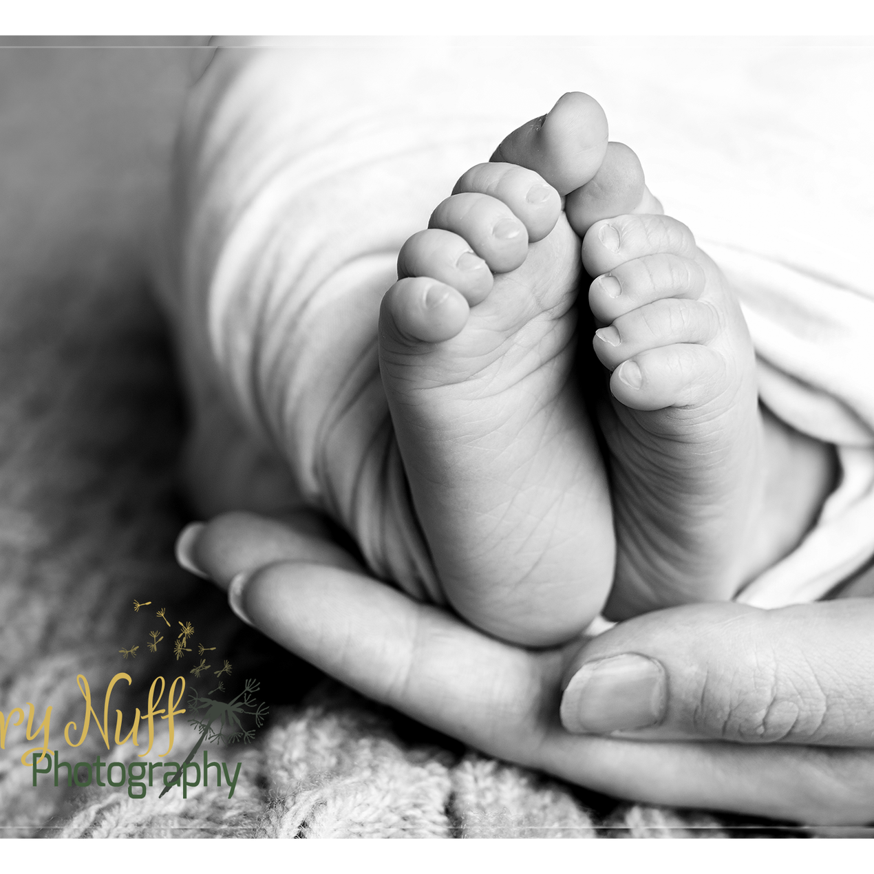 black and white baby feet in Mothers hand by Fairy Nuff Photography, Nottingham