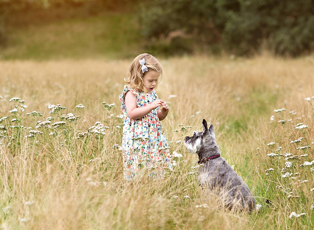 family photography session with Fairy Nuff Photography, child and dog in a summer meadow